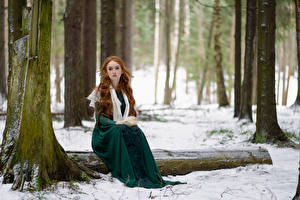 Wallpapers Forest Snow Trees Sit Frock Redhead girl Staring Anna Zhu, Kirill Sokolov Nature Girls