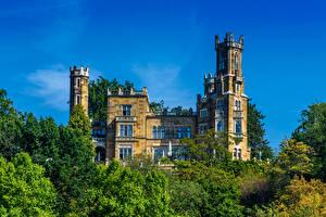 Bilder Deutschland Dresden Burg Bäume Eckberg Castle Städte