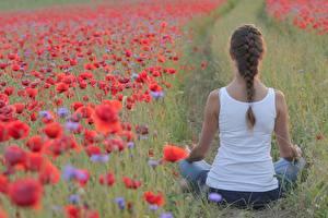 Fotos Grünland Mohnblumen Yoga Pose Hinten Zopf Sitzend Braune Haare Unterhemd Mädchens