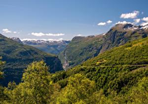 Hintergrundbilder Norwegen Berg Wälder Canyon Geirangerfjord Natur