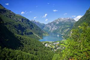 Fotos Norwegen Berg Wald Gebäude Bucht Laubmoose Geiranger Fjord Natur