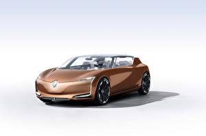 Bakgrundsbilder på skrivbordet Renault Vit bakgrund Bruna Metallisk Symbioz 2017 bil