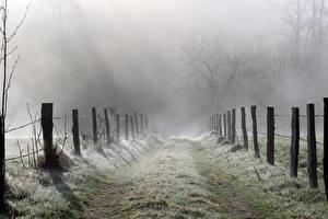 Hintergrundbilder Wege Gras Zaun Nebel Natur