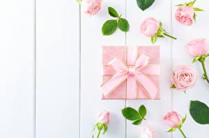 Hintergrundbilder Rose Knospe Schachtel Geschenke Schleife Rosa Farbe Bretter