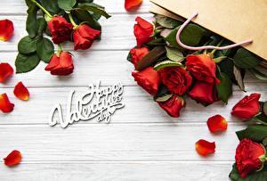 Fotos Rosen Valentinstag Kronblätter Wort Englisch Blüte