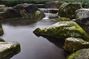 Wallpaper Stone Stream Moss Nature