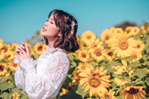 Bilder Sonnenblumen Asiaten Unscharfer Hintergrund Posiert Hand Braune Haare Niedlich junge frau Blumen