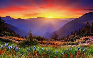 Bilder Morgendämmerung und Sonnenuntergang Gebirge Landschaftsfotografie Gras Lichtstrahl Natur