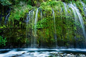 Hintergrundbilder Vereinigte Staaten Wasserfall Kalifornien Felsen Laubmoose Mossbrae falls Natur