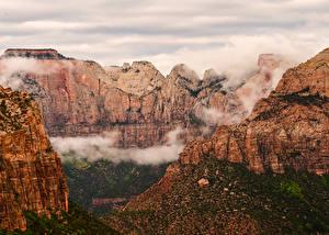Bilder Vereinigte Staaten Zion-Nationalpark Park Berg Canyon Natur