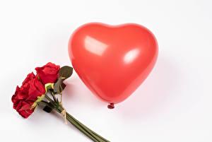 Tapety na pulpit Walentynki Bukiety Róże Na białym tle Czerwony Balon Serce kwiat