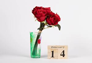 Fotos Valentinstag Rose Grauer Hintergrund Englischer Text Rot Vase Blüte