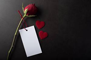 Hintergrundbilder Valentinstag Rose Grauer Hintergrund Vorlage Grußkarte Herz Blatt Papier Dunkelrote Blüte