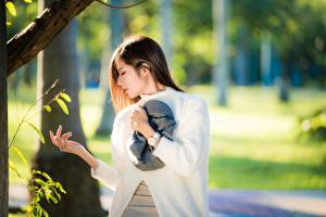 Papel de Parede Desktop Relógio de pulso Asiática Fundo desfocado Posando Mão Cabelo castanho jovem mulher