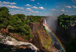 Bilder Wasserfall Felsen Regenbogen Strauch Victoria Falls Zimbabwe