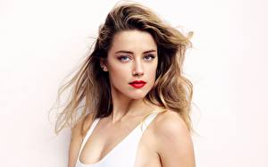 Bilder Amber Heard Grauer Hintergrund Unterhemd Haar Blick Prominente Mädchens