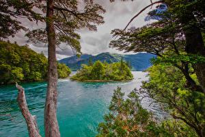 Fonds d'écran Argentine Montagnes Île Baie géographie Arbres Chubut Patagonia