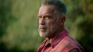 Bureaubladachtergronden Arnold Schwarzenegger Oud Bebaarde Kijkt Hoofd Terminator: Dark Fate film Beroemdheden