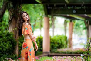 Fotos Asiaten Unscharfer Hintergrund Hand Braune Haare Starren junge frau