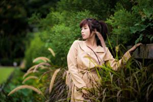 Bilder Asiatische Bokeh Hand Umhang Braunhaarige junge Frauen