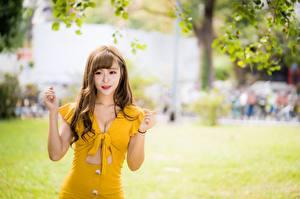 Bakgrunnsbilder Asiater Bokeh Posere Kjole Utringning Hender Brunt hår kvinne ung kvinne