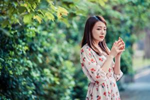 Tapety na pulpit Azjatycka Bokeh Pozować Sukienka Ręce Szatenka młode kobiety