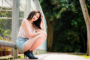 Photo Asiatic Blurred background Posing Sitting Skirt Singlet Brown haired Glance Fence female