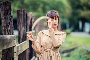 Fotos Asiaten Federn Unscharfer Hintergrund Posiert Hand Braune Haare Starren
