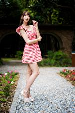 Picture Asiatic Posing Legs Frock Brown haired Hands young woman