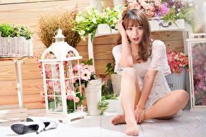 Fotos Asiaten High Heels Bein Sitzt Posiert Braune Haare Starren Niedlich junge frau