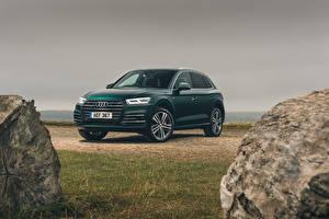 Desktop hintergrundbilder Audi Grün 2019-20 Q5 55 TFSI e quattro S line Autos