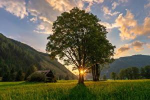 Fonds d'écran Autriche Montagne Levers et couchers de soleil Rayons de lumière Arbres Herbe Ramsau