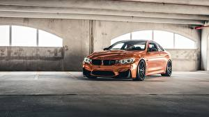 Pictures BMW Coupe F82, Sight, Bronze automobile