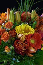 Fotos Blumensträuße Rose Gerbera Tulpen Blüte