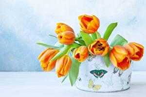 Papel de Parede Desktop Buquês Tulipa Caixa Laranja flor