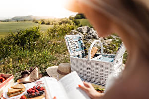 Bilder Butterbrot Picknick Weidenkorb Der Hut das Essen