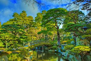 Bilder China Kyōto Park Teich Brücken HDR Design Bäume Imperial Palace park