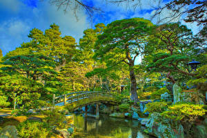 Images China Kyoto Parks Pond Bridges HDR Design Trees Imperial Palace park Nature