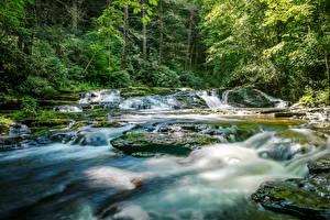 Desktop hintergrundbilder Kroatien Wald Wasserfall Laubmoose Rastoke Slunj Natur