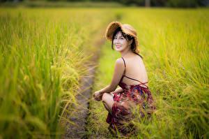 Fotos Acker Asiatische Unscharfer Hintergrund Sitzt Kleid Rücken Der Hut Brünette Blick junge frau