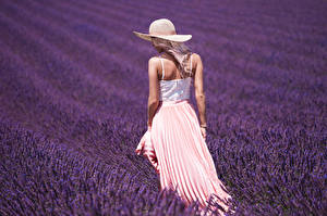 Bakgrunnsbilder Åker Lavendelslekta Bakfra Hatt ung kvinne