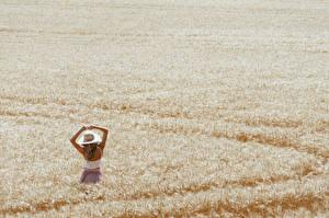 Bilder Acker Weizen Natur Mädchens