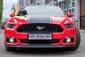 Fotos Ford Vorne Strips Rot Mustang GTR