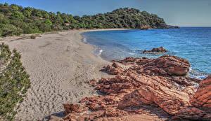 Image France Coast Stone Sand Cliff Branches Beach Corsica Nature