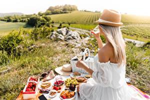 Bilder Picknick Gras Sitzend Blond Mädchen Der Hut Weinglas Kleid junge Frauen Lebensmittel