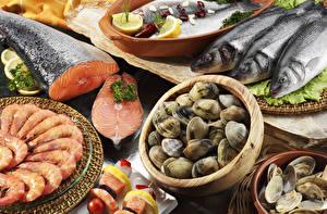 Images Seafoods Fish - Food Caridea Shells