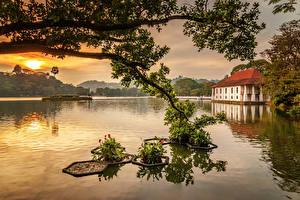 Wallpaper Sri Lanka Lake Houses Sunrise and sunset Branches Kandy Lake Nature