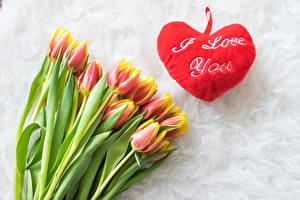 Hintergrundbilder Tulpen Herz Text Englischer