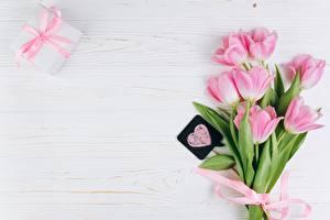 Bilder Tulpen Valentinstag Rosa Farbe Vorlage Grußkarte Herz Blüte