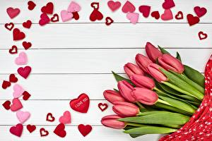 Wallpaper Tulip Valentine's Day Wood planks Heart Template greeting card Pink color Flowers